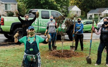 Colleagues with Nashville-based Physician Services Group give back at a tree-planting volunteer project.